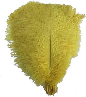 big yellow feather