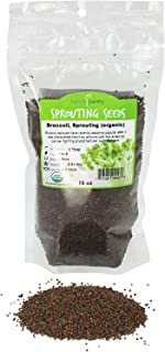 Organic Broccoli Sprouting Seeds By Handy Pantry | 1 Pound Resealable Bag| | Non-GMO Broccoli Sprouts Seeds, Contain Sulfo...