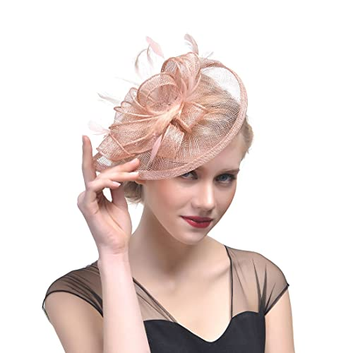 FeiYu Crafts Penny Mesh Hat Fascinator with Mesh Ribbons and Black Feathers 5993937ad07