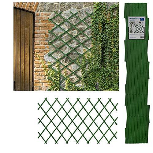 Comercial Candela Celosia Extensible Plastica Color (1x3 Metros, Verde)