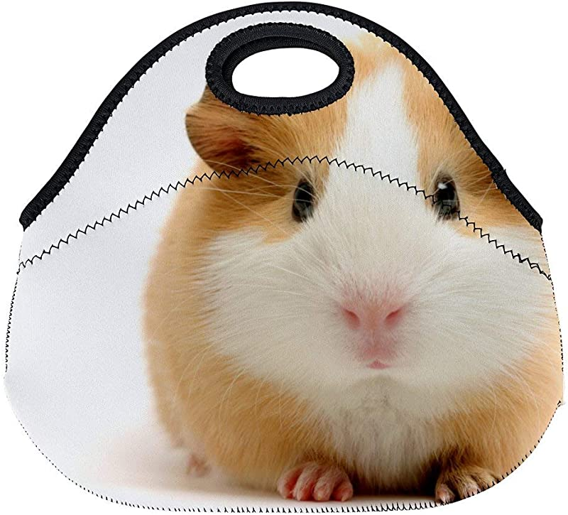 Cute Guinea Pig Neoprene Lunch Tote Insulated Reusable Picnic Lunch Bags Boxes For Women Men And Kids Mom Bag Tote Bag For Work Office Picnic