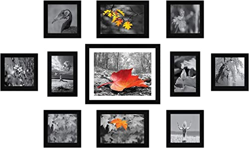 Amazon Brand - Solimo Collage Set of 11 Black Photo Frames ( 4 x 6 Inch - 2 & 5 X 5 Inch - 6, 5 X 7 inch - 2 & 8 X 10...