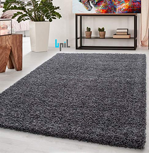BPIL Shaggy Rugs Soft plain Thic...