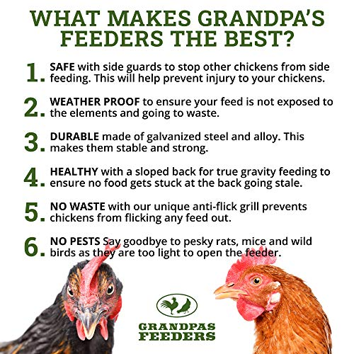 Grandpa's Feeders Automatic Chicken Feeder - Sturdy Galvanized Steel Poultry Feeders - No Spill with Weatherproof Lid - Standard Size for 6-12 Chickens 10 Days (20lb Feed)