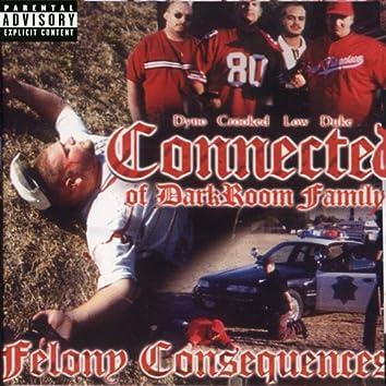 Felony Consequences