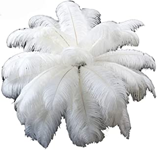 White Ostrich Feathers for centerpieces 12-15