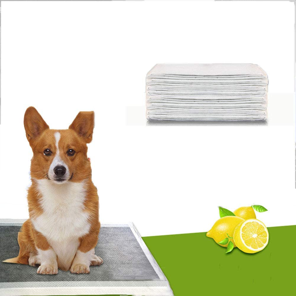 ELEAMO Puppy Pee Training Selling and selling Mat Dog Trainin Super Absorbent Holder Superior