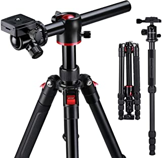 K&F Concept 170cm Trípode Cámara Reflex TM2515T1 con Monopie 360° y 180° Columna Central Transversal 360° Rótula de Bola Panorámica y 1/4 Placa Rápida Liberación para Cámara DSLR Canon Nikon Sony