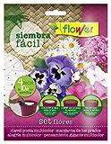Flower 51168 51168-Siembra fácil flores, No aplica, 19x2x19 cm