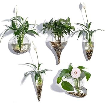 KNIKGLASS - Juego de 5 jarrones de Cristal geométricos para Plantas de Agua o Flores, montado en la Pared de Cristal Transparente
