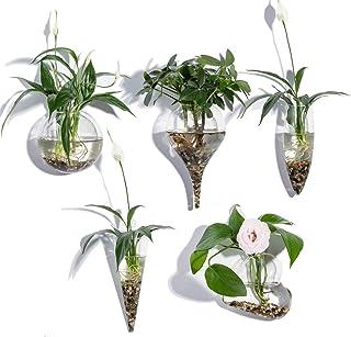 KNIKGLASS - Juego de 5 jarrones de Cristal geométricos para Plantas de Agua o Flores, montado en la Pared de Cristal Trans...