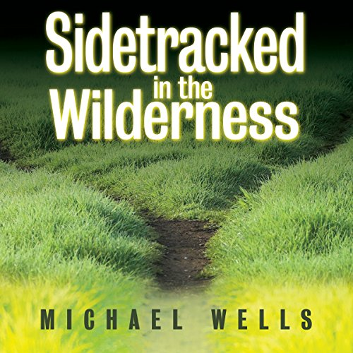 Sidetracked in the Wilderness audiobook cover art