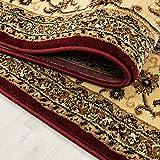Teppich Orientteppich Wohnzimmer Klassische Optik Orientalisch Ornamente Rot, Maße:200 cm x 290 cm - 5