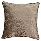 Beautyrest Sandrine Velvet Decorative Pillow, 20' x 20', Mink