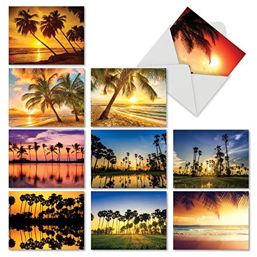 10 Note Cards w/Envelopes - Assorted 'Palm Beaches' Blank Greeting Cards - Perfect All-Occasion Cards for Birthday, Wedding, Thank You - Stationery Notecards 4 x 5.12 inch M6457OCB