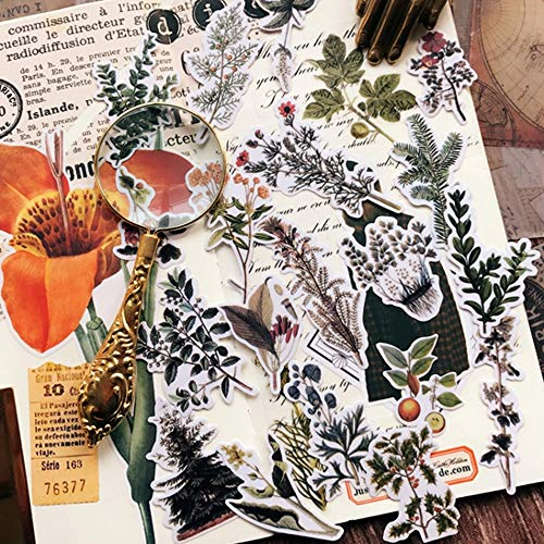 XXCKA Vintage Gras Blätter Blume Papier Aufkleber DIY Craft Scrapbooking Album Junk Decor Aufkleber 21Pcs / Set