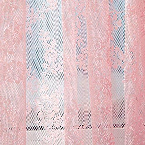TPulling Warp Stricken Doppelte Spitze Blumen-bloße Vorhang-Tüll-Fensterbehandlungs-Voile Drapieren Volant 1 Platten-Gewebe Vorhänge (Rosa)