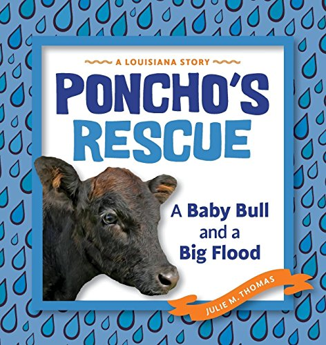 Poncho's Rescue: A Baby Bull and a Big Flood