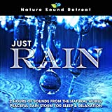 Just Rain: 2 Hours of Sounds from the Natural World Peaceful Rain Storm for Sleep & Relaxation