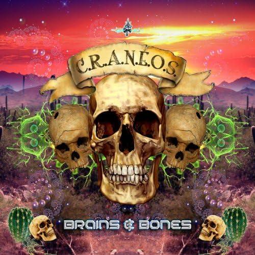 Brains & Bones