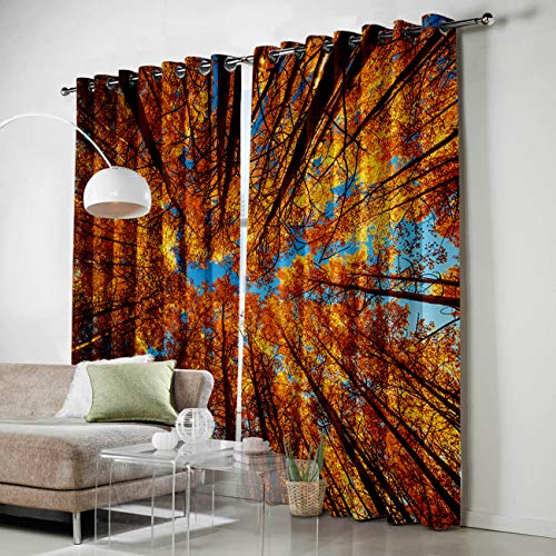 Price comparison product image HomeCreator Window Blackout Curtains Sunlight in The Autumn Forest Curtains Darkening Thermal Insulated Curtains for Living Room Bedroom Window Drapes Set of 2 Panels-52 x96