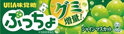 UHA味覚糖 ぷっちょ シャインマスカット