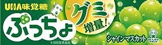 UHA味覚糖 ぷっちょ シャインマスカット スティック ×10個