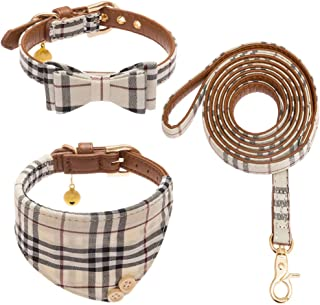 gucci dog collar and lead