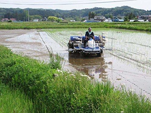 暮坪農場『岩手県特別栽培米暮坪米まの』