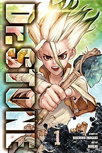 Dr. STONE, Vol. 1: Stone World (English Edition) eBook: Inagaki ...
