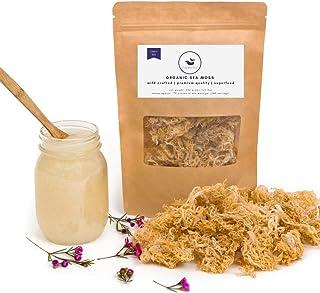 Happy Fox Organic Sea Moss   Premium Quality, Great Value - Makes 10 Mason Jars of Raw Seamoss Gel   100% Wildcrafted, Cle...