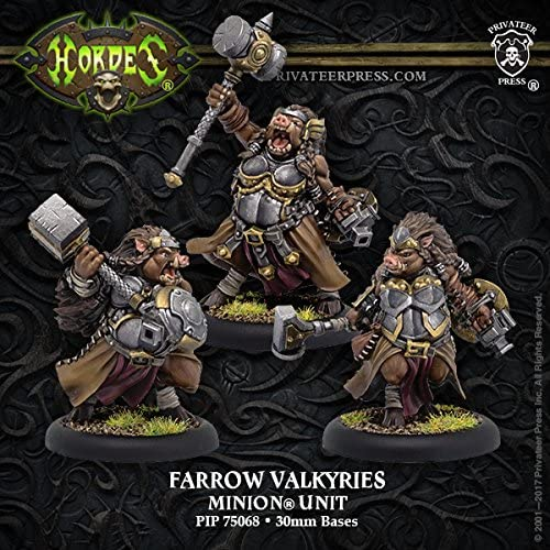 完売 Privateer Press Farrow Valkyries: Minion 3 低価格 Unit Metal Resin
