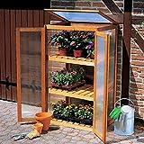 Anzuchtschrank für Pflanzen 70x50x120cm Frühbeetschrank Zuchtschrank Frühbeet