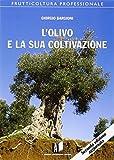 l'olivo e la sua coltivazione