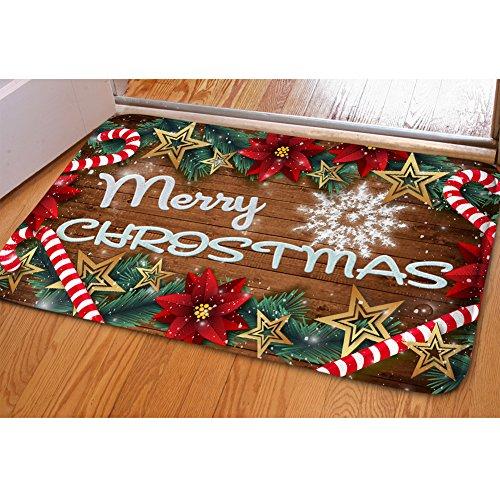 PZZ Entrance Door Mat Christmas Poinsettia Flower Doormat Indoor Front Rugs Soft Non-Slip Carpets for Bathroom Living Room Bedroom Kitchen