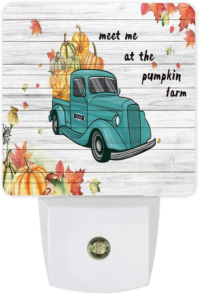 Plug-in Night Light Lamp with Pumpkin Autumn Harvest Farm 67% OFF ...
