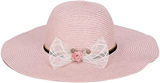 ZiWen Lu Hat Female Summer Foldable Big Visor Korean Version of The Refreshing Sunscreen Beach (Color : Brown)