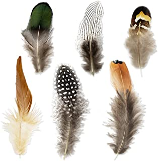 real feathers for crafts