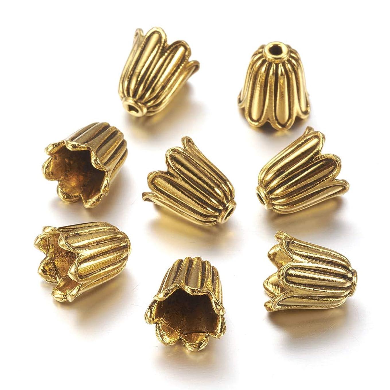 Craftdady 20Pcs Antique Golden Flower Spacer Bead Caps 10x10mm Cadmium Free & Lead Free & Nickel Free Tibetan Metal Bead Cone End Caps Terminators for DIY Jewelry Making gbeocvvfhfyl