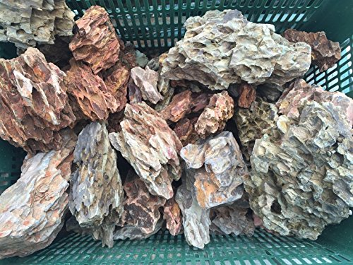 4LBS - Ohko Dragon Stone Rock - Aquarium Tropical Fish Plant Shrimp Driftwood