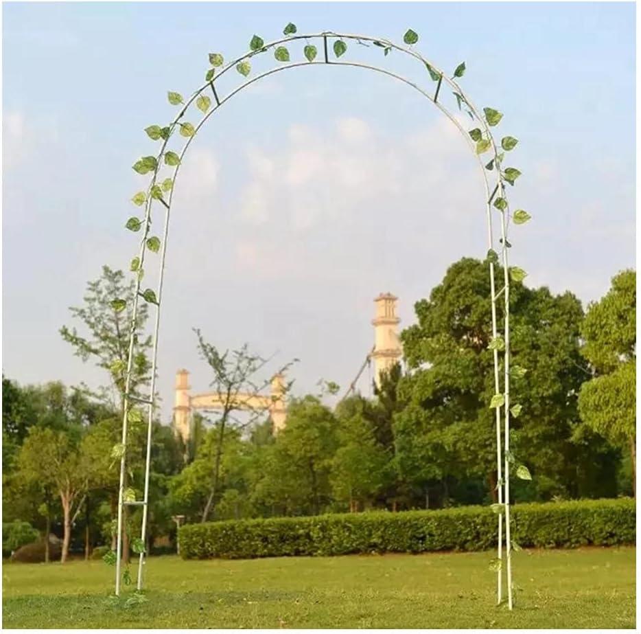 DJFH Outdoor Wedding Arch Metal Garden Indianapolis Mall St Ranking TOP7 Pergola Arbor Backdrop