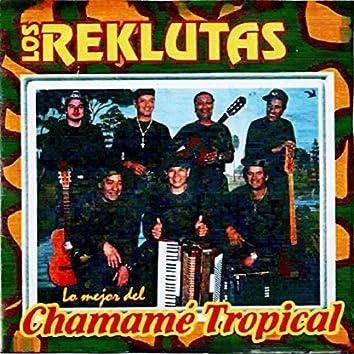 Lo Mejor Del Chamamé Tropical