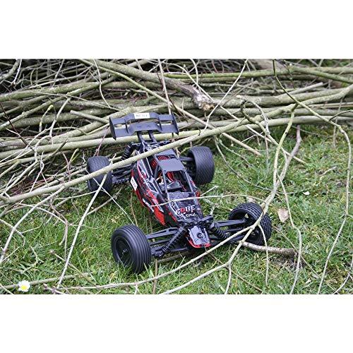 RC Auto kaufen Buggy Bild 4: 1:10 CORE*