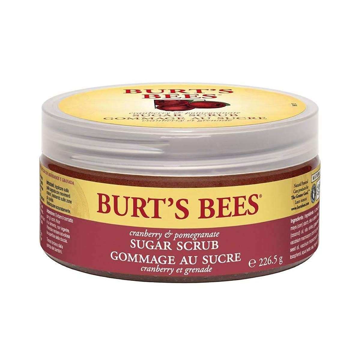 ヒット慣れる上がるバーツビーズ (Burt's Bees) C&P シュガースクラブ 225g