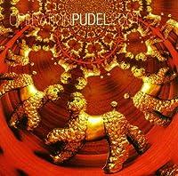 Operation Pudel 2001