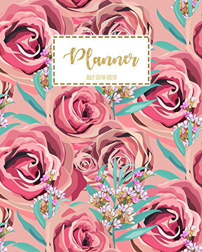Planner July 2018-2019: July 2018-July 2019 Student Planner, College Planner, Calendar Schedule Organizer and Journal Notebook: Volume 2