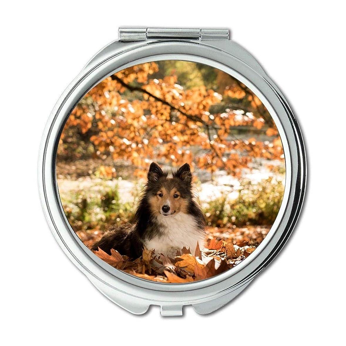 ダンス友情推定するミラー、メークアップミラー、犬シェルティー秋の樹木、ポケットミラー、携帯用ミラー