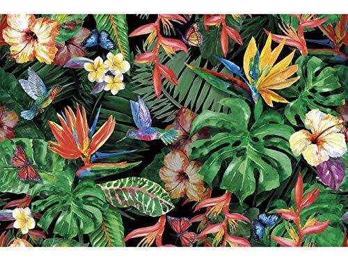 Oedim Tapis Carpette Vinylique Lino Exotique Plantes imprimées (Fleurs Tropicales avec Papillon Colibri)   95 cm x 200 cm   Décoration Maison   Tapis en PVC   Sol en Vinyle