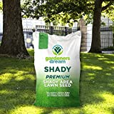 Gardeners Dream Shady Lawn Grass Seed