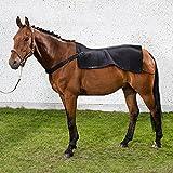 Back on Track Rückenwärmer Royal
